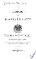 1889. Leyes de la Asamblea Legislativa del Territorio de Nuevo Mejico, sesion vigesima-octava