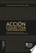 Acción colectiva y redes transnacionales