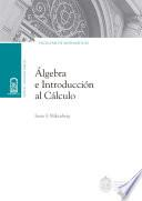 Álgebra e introducción al cálculo