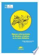 Algunas enfermedades de bovinos y equinos en la Costa Atlántica