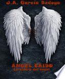 Ángel Caído: La piedra del ángel