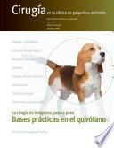 Bases prácticas en el quirófano. Cirugía en la clínica de pequeños animales