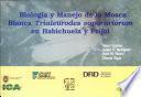 Biología y manejo de la mosca blanca Trialeurodes vaprariorum en habichuela y frijol