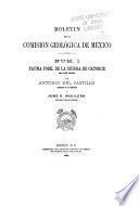 Boletín del Instituto Geológico de México