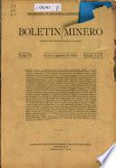 Boletín minero