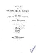 Boletín - Univesidad Nacional Autónoma de México, Instituto de Geología