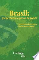 Brasil: ¿hegemonía a pesar de todo?