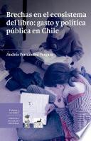 Brechas en el ecosistema del libro: gasto y política pública en Chile.