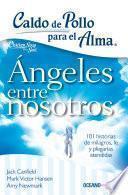 Caldo de pollo para el alma: ángeles entre nosotros