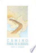 Camino para ir a Jesús