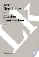 Camino trans-andino
