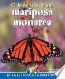 Ciclo de vida de una mariposa monarca