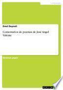 Comentarios de poemas de José Angel Valente
