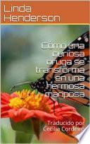 Cómo una curiosa oruga se transforma en una hermosa mariposa