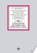 Conceptos de Derecho procesal civil