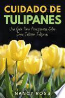 Cuidado de Tulipanes: Una Guia Para Principiantes Sobre Como Cultivar Tulipanes