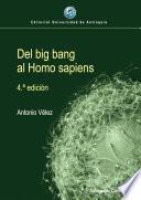 Del big bang al Homo sapiens