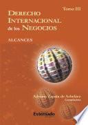 Derecho Internacional de los Negocios. Alcances. T. III