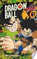 Dragon Ball Color Saiyan