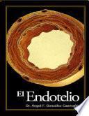 EL ENDOTELIO