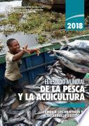 El estado mundial de la pesca y la acuicultura 2018
