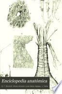 Enciclopedia anatómica