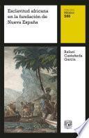 Esclavitud africana en la fundación de Nueva España