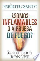 Espiritu Santo - Somos inflamables o prueba de fuego?