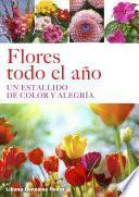 Flores todo el año, Un estallido de color y alegría