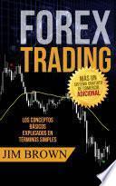 Forex Trading: Los conceptos básicos explicados en términos simples