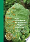 Guía ilustrad de enfermedades y patógenos en cultivos hortícolas