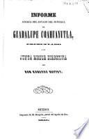 Informe acerca del estado del mineral de Guadalupe Coahuayutla