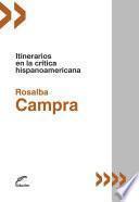 Itinerarios en la crítica hispanoamericana
