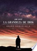 Job ante la grandeza de Dios