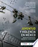 Juventud y violencia en México