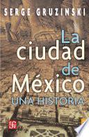 La ciudad de México. Una historia