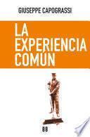 La experiencia común