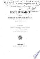 La peste bubonique dans la république Argentine et au Paraguay. Epidémies de 1899-1900. Rapport présenté au Département National d'Hygiène