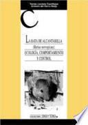 La Rata de Alcantarilla