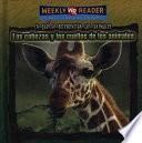 Las cabezas y los cuellos de los animales (Animal Heads and Necks)