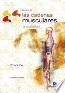 Las cadenas musculares (Tomo III)
