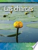 Las charcas (Ponds) (Spanish Version)