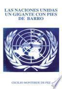 Las Naciones Unidas un Gigante on Pies de Barro