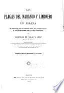 Las plagas del naranjo y limonero en España