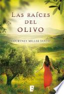 Las raíces del olivo