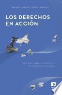 Los derechos en acción: Obligaciones y principios de derechos humanos