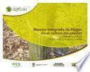 Manejo integrado de plagas en el cultivo del caucho (Hevea brasiliensis) medidas para la temporada invernal