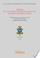 Memoria del pleno sobre tres crisis encadenadas: sanitaria, económica y social