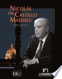 Nicolás del Castillo Mathieu