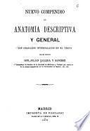 Nuevo compendio de anatomía descriptiva y general